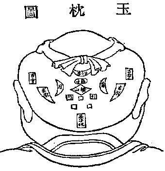 脑部结构示意图枕骨